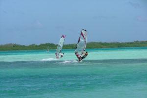 bonaire_windsurf